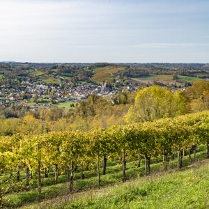Vignes du Jurançon au début de l'automne et la ville de Monein